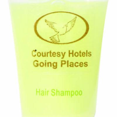 Hair Shampoo Logo (2)